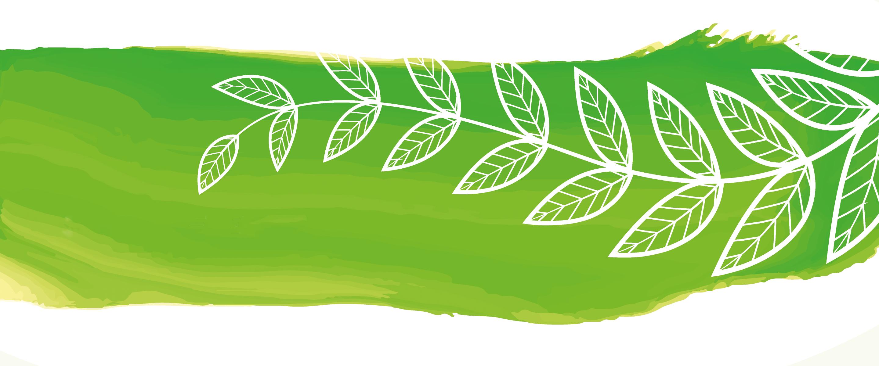 webshop banner