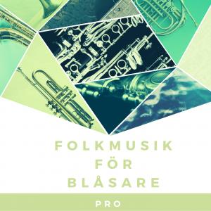 Onlinekurs Folkmusik för blåsare PRO