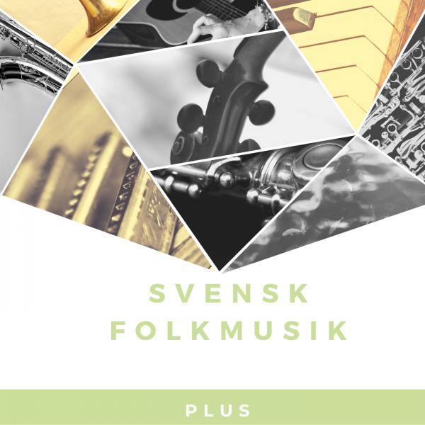 Svensk Folkmusik PLUS kurs